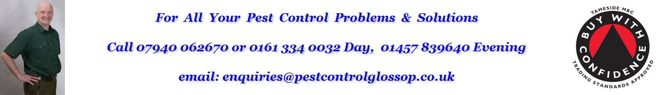 Pest Control Glossop