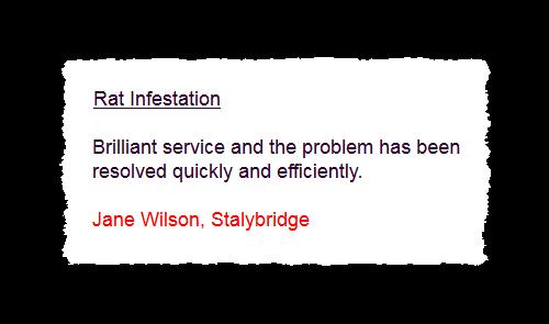 Domestic_Testimonial_Wilson_Stalybridge